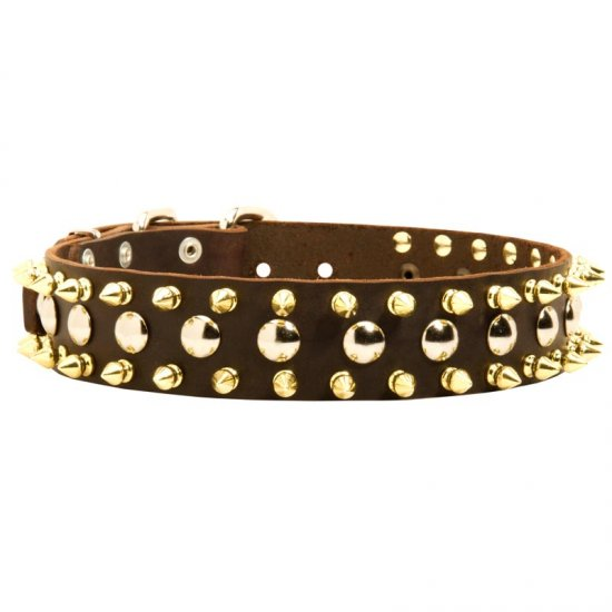 Spiked and Studded American Bulldog Leather Collar