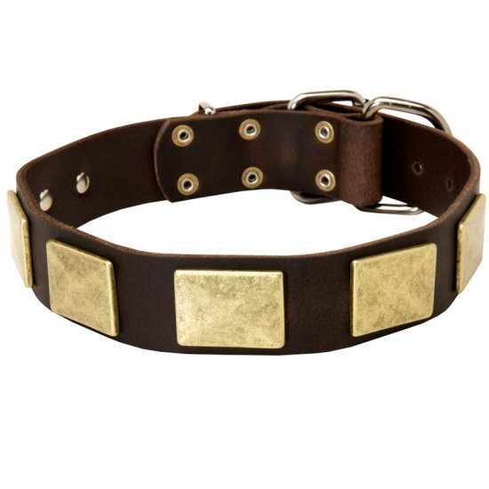 Handcrafted Leather American Bulldog Collar With Vintage Massive Plates