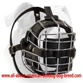 'No Mash' Basket Wire American Bulldog Muzzle Padded All Over