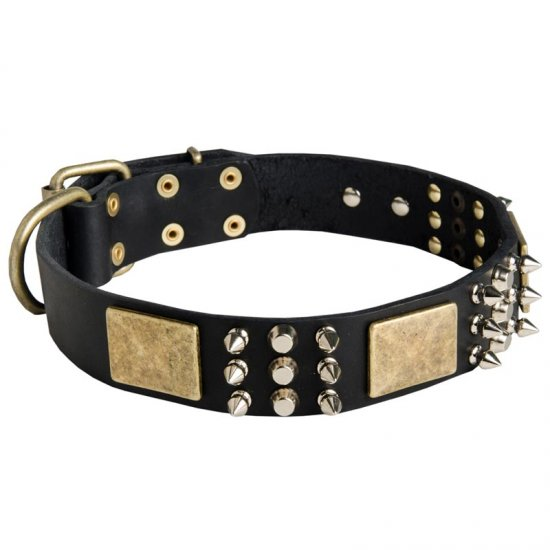 Spiked Leather American Bulldog Collar with Plates and Cones