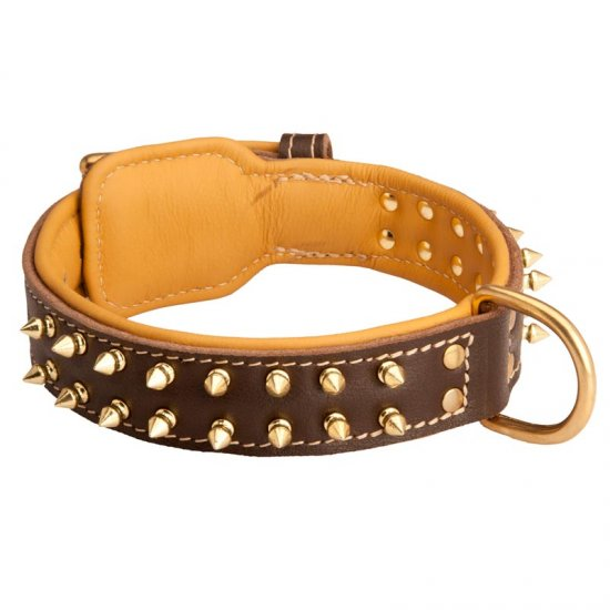 Spiked American Bulldog Collar Padded with Nappa Leather