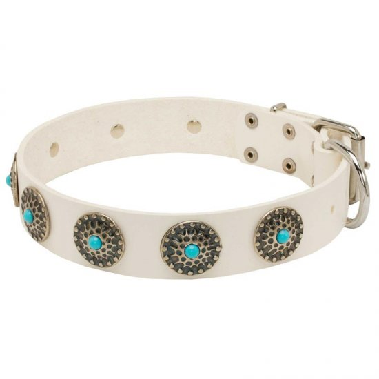 Exclusive White Leather American Bulldog Collar with blue stones