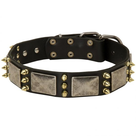 American Bulldog Spiked Leather Collar with Nickel Plates