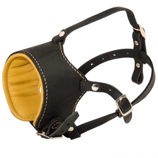 Snout Short Leather American Bulldog Muzzle Padded with Nappa Leather
