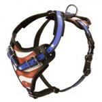 American Flag Painted Leather American Bulldog Harness for Agitation Training