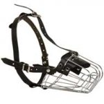 Wire Basket American Bulldog Muzzle for Comfortable Walking and Training