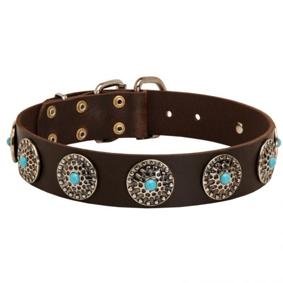 Leather American Bulldog Collar with Blue Stones for Stylish Walking