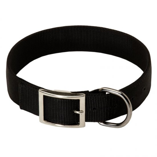 2 Ply Nylon American Bulldog Collar