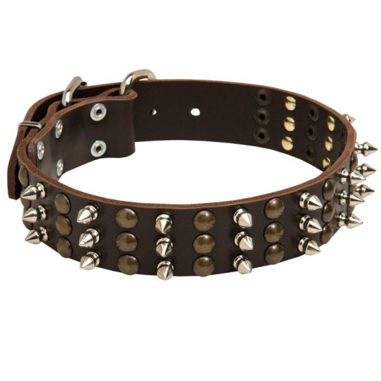 American Bulldog Spikes and Studs Rows Leather Dog Collar