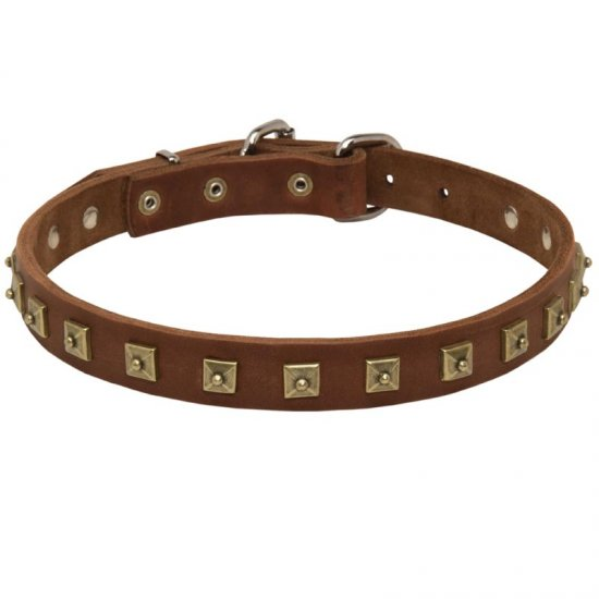 Handcrafted 1 Row Square Studded Leather American Bulldog Collar