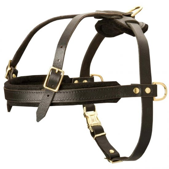 Leather American Bulldog Harness for Tracking and Pulling