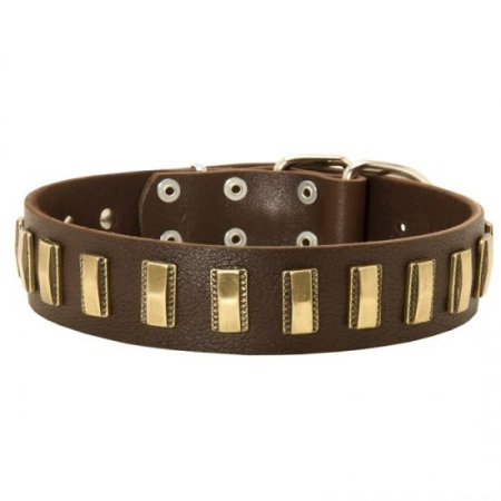 American Bulldog Leather Collar with Shiny Plates