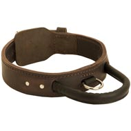 Extra Durable Leather American Bulldog Collar with Handle for Attack Training