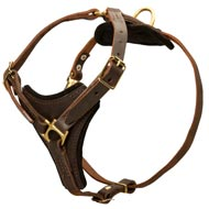 Tracking Leather American Bulldog Harness With Y-Chest Plate