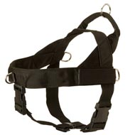American Bulldog Harness Nylon with Patches