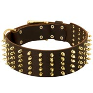 Wide Spiked Leather American Bulldog Collar