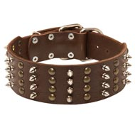 Extra Wide Leather Spiked and Studded American Bulldog Collar