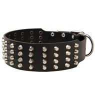 Extra Wide 4 Rows Studded Leather American Bulldog Collar
