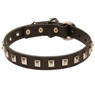 American Bulldog Leather Collar Caterpillar Design