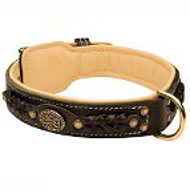 American Bulldog Leather Collar Braided