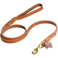 Walking and Training Leather American Bulldog Leash with Comfy Handle