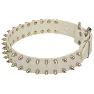 Spiked White Leather American Bulldog Collar for Fashion Walking