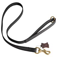 All Weather Nylon American Bulldog Leash for Walking and Training Activities