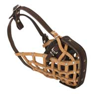 Basket-Like American Bulldog Muzzle Leather