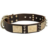 Designer War-Style Leather American Bulldog Collar with Spikes and Plates