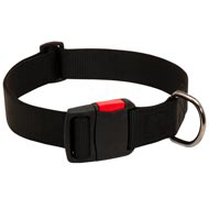 Any-Weather Nylon American Bulldog Collar With Quick Release Buckle for Training and Walking