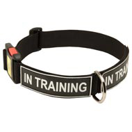 All Weather Nylon American Bulldog Collar with ID Patches