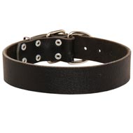 Wide Leather American Bulldog Collar for Training and Walking