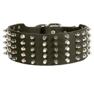 American Bulldog Leather Collar Spiked and Studded