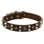 Leather American Bulldog Collar With Studs and Pyramids