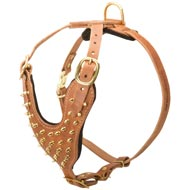 Brass Spiked Leather American Bulldog Harness for Fashion Walking