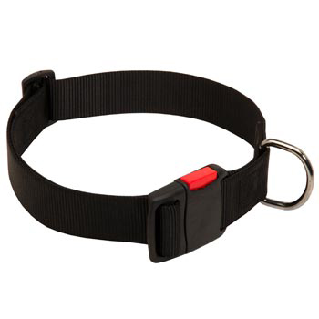 Nylon American Bulldog Collar for Training and Waling