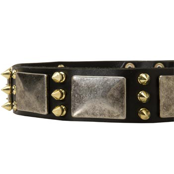 Stylish Leather Dog Collar for American Bulldog