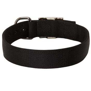 Nylon Collar for American Bulldog Comfy Training