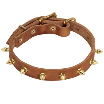 Designer Leather Collar for American Bulldog