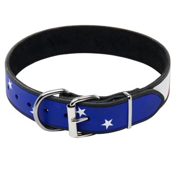 American Bulldog Leather Collar With American  Flag Painting