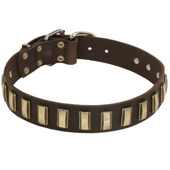 Leather American Bulldog Collar Designer for Walking in Style