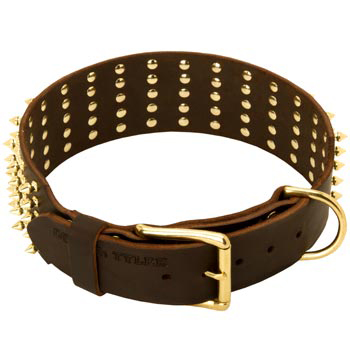 Leather American Bulldog Collar with Solid Buckle and D-ring