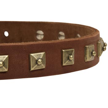 American Bulldog Leather Collar With Square  Studs