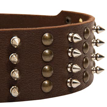American Bulldog Leather Collar with Rust-proof Fittings