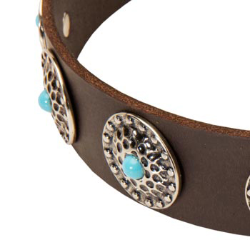 Blue-Stones Leather American Bulldog Collar