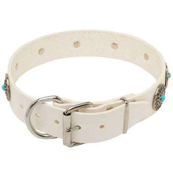 Leather   American Bulldog Collar White Fancy for Dog Training, Walking