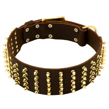 Fashionable Spiked Leather American Bulldog Collar