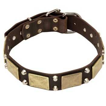 Nickel Studded Leather American Bulldog Collar