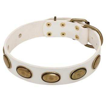 White Leather American Bulldog Collar with Vintage Oval Plates