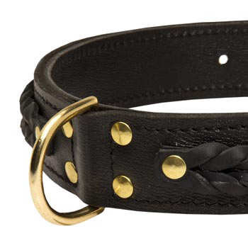 American Bulldog Wide Leather Collar with D-ring